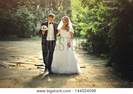 Wedding Couple Walking At Park In A Backlit