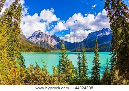 The green lake surrounded by a coniferous forest. Magic Emerald Lake in Yoho National Park, Rocky Mountains