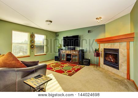Modern Living Room Interior In Green Tones With Fireplace