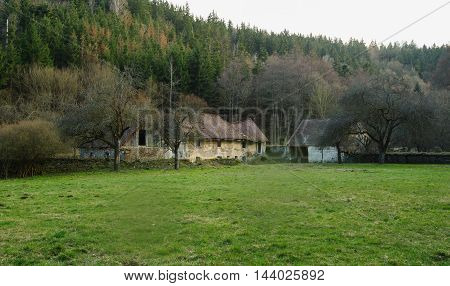 Very old cottage with pasture in the woods