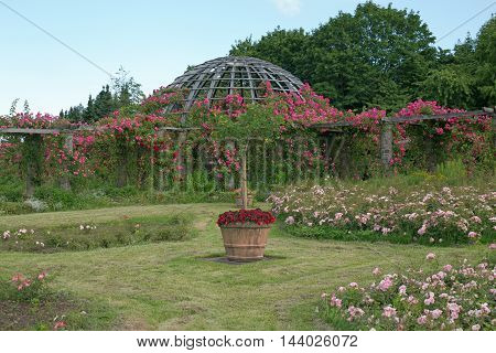 Rosendom (roses dome) on the Rosenhoehe in Darmstadt (Hesse, Germany)
