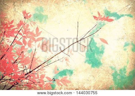 Pink leafs in a tree in autumn