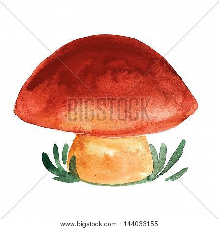 Icon of orange-cap boletus Hand drawn image of mushroom