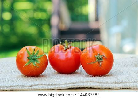 Three Cherry tomatoes in a row on a burlap cloth with shallow depth of field copy space