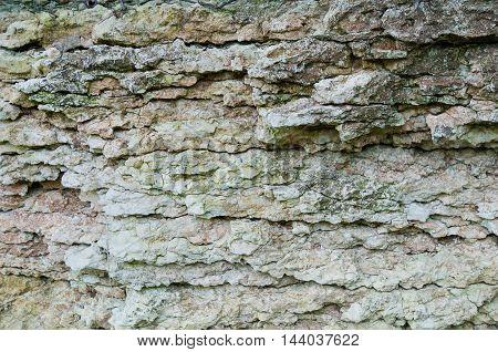 River Limestone Texture