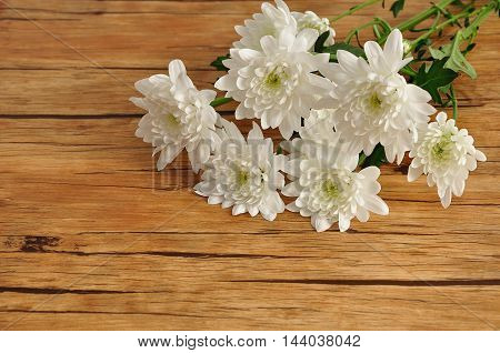 A bouquet of  white asters on a wooden background