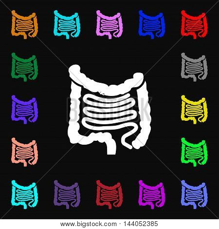 Intestines Icon Sign. Lots Of Colorful Symbols For Your Design. Vector