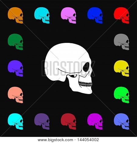 Skull Icon Sign. Lots Of Colorful Symbols For Your Design. Vector