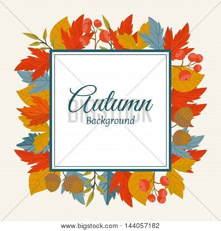 Autumn leaves fall on border vector illustration. Background with hand drawn autumn leaves. Design elements.  Autumn leaves concept. Different autumn leaves. Abstract leaves. Frame with leaves.