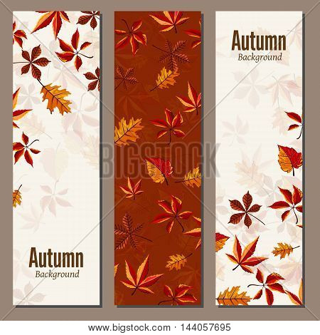 Banners set of autumn leaves vector illustration. Background with hand drawn autumn leaves. Design elements. Autumn leaves fall on banner. Natural concept background.