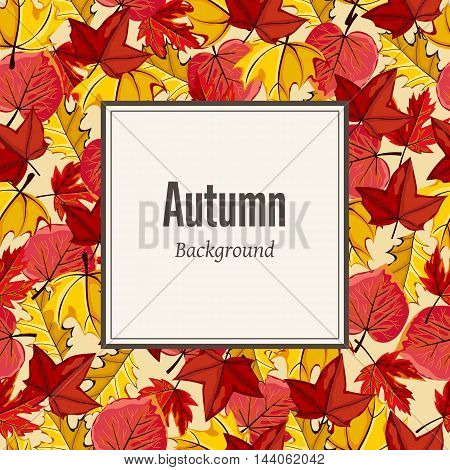 Autumn leaves fall on border vector illustration. Background with hand drawn autumn leaves. Design elements. Autumn leaves concept. Different autumn leaves. Abstract leaves. Autumn frame.