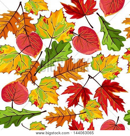 Banners set of autumn leaves vector illustration. Background with hand drawn autumn leaves. Design elements. Autumn leaves fall on banner. Autumn leaves concept. Different autumn leaves. Abstract leaves. Autumn frame.