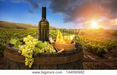 Wine and vineyard in Tuscany sunset. Italy