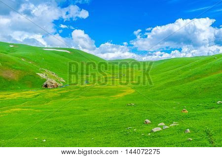 The bright green wet meadow with numerous tiny streams in the highlands of Gegharkunik Province Armenia.