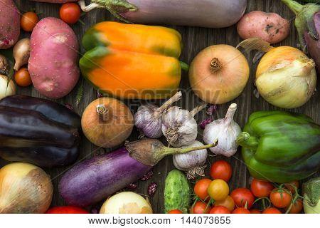 Fresh Organic Vegetables. Autumn Harvest Concept. Potatoes, Tomatoes, Cucumbers, Pepper, Onions, Car