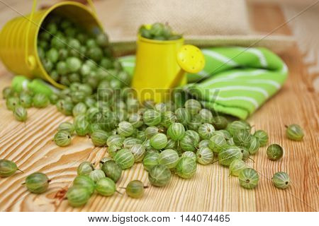 Fresh gooseberries with small watering can on wooden table