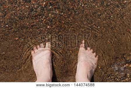 Barefoot in water. Feet standing in water on the beach of a lake.