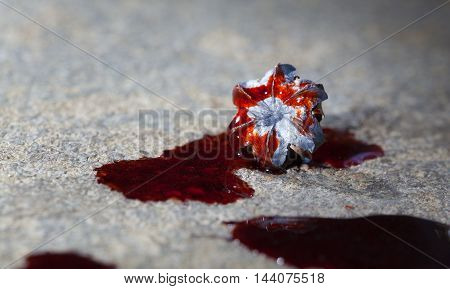 Blood on the concrete with an expanded hollow point bullet