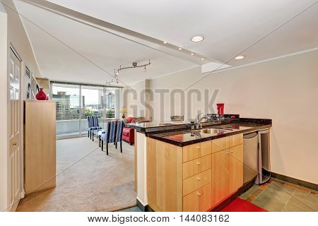 Apartment Interior. Kitchen Island View With Living Room