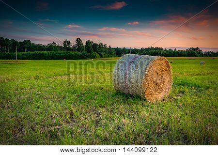 Countryside summer field with rolls of haystacks on hilly horizon