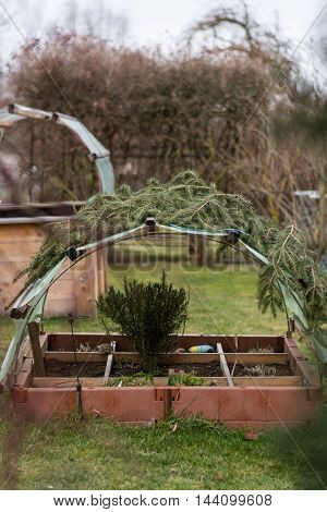 divided cold frame and raised bed with canopy