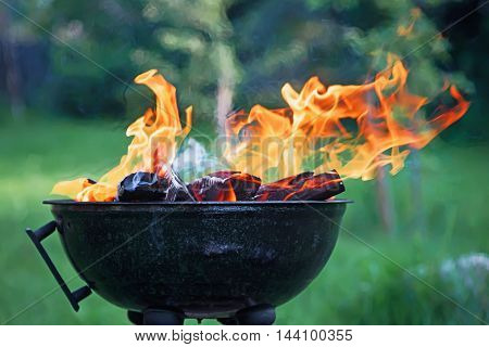 fryer with burning fire wood against a green background