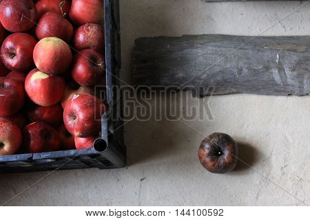 Box of red apples , one rotten no place in it