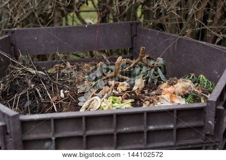 Vegetable and garden waste in open composter