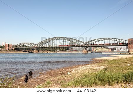 The South Bridge over the Rhine River in Cologne North Rhine-Westphalia Germany