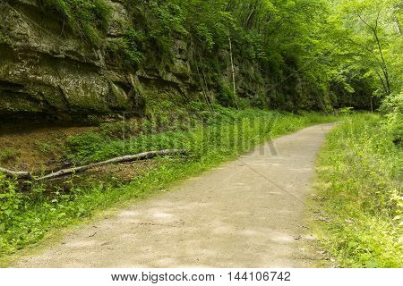 A bike trail next to a cliff in the woods.