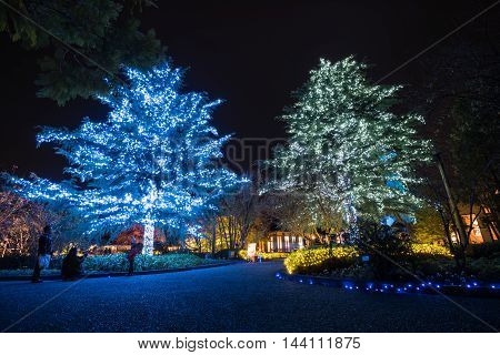 MieNagoya Japan - November 23 2015 : Unidentified tourist visiting Nabana no sato winter illumination in Mie NagoyaJapan. It is one of Japan's largest illumination parks.