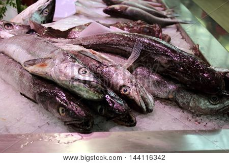 fish market in a southern europe cities