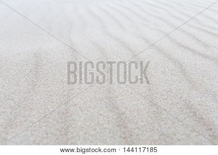 Sea sand dunes on a sunny day, selective focus