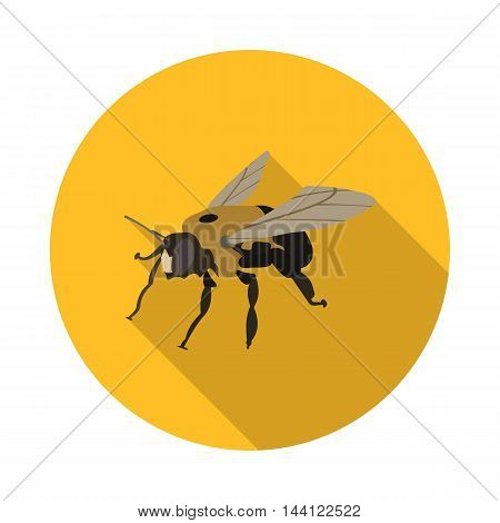 flat icon bee carpenter in vector format eps10