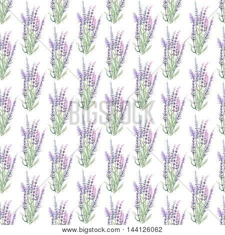 Floral seamless pattern with lavender painted with watercolors on a white background