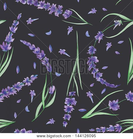 Seamless pattern with the watercolor lavender flowers, hand-drawn on a dark background