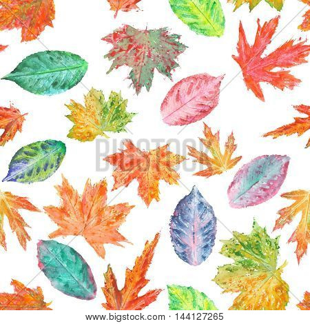 Seamless pattern with bright autumn leaves painted in watercolor on a white background