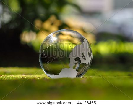 Transparent sphere. Green moss. The concept of ecology environmental protection