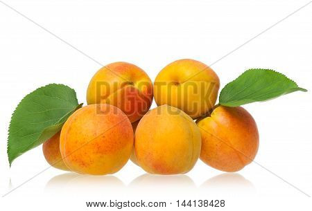 Fresh ripe apricots isolated on a white background