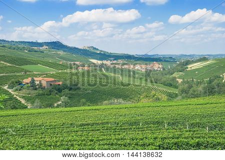 View to Wine Villages of La Morra and Barolo in Piedmont,Italy