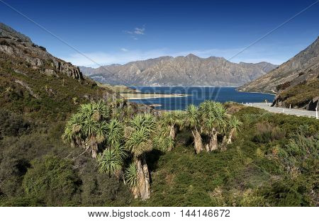 Viewpoint At A Rocky Ridge Called The Neck Stands Between Lake Wanaka And Lake Hawea At Their Closes