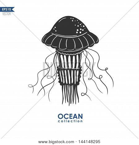 vector jellyfish silhouette, illustration of medusa isolated on white, black and white illustration