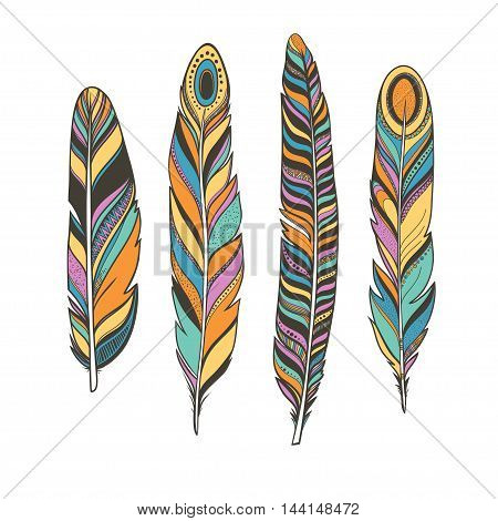 colorful feathers, boho style hand drawn vector bird feathers