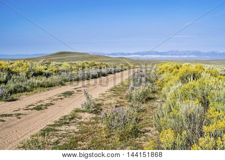 ranch road in North Park of Colorado, late summer scenery with wildflowers