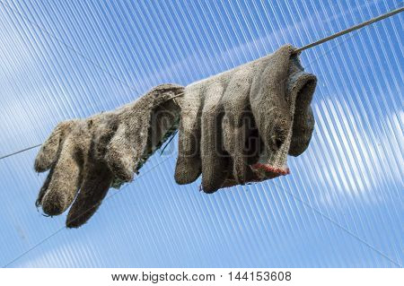 Gloves for agricultural works on a wire