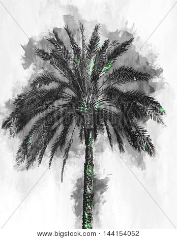 Single large palm tree as rendered abstract painting with subtle mint green highlights
