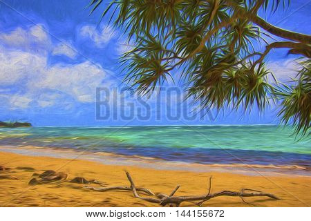 Illustrative image of drift wood on deserted beach. Palm tree in foreground.
