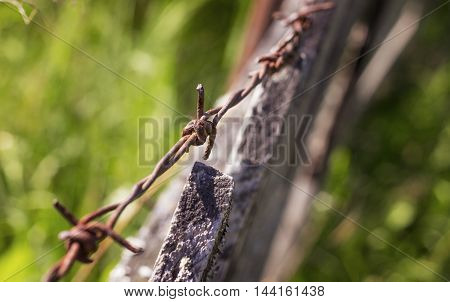 barbed wire on an old wooden fence