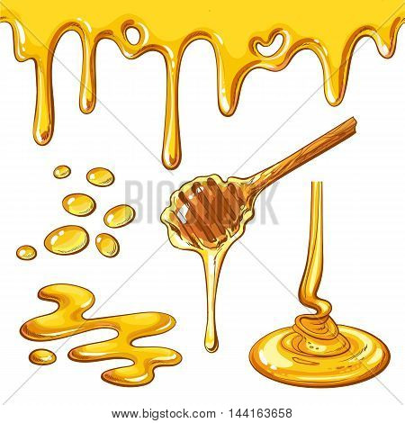 Set of honey drops and blots, cartoon style vector illustration isolated on white background. Honey dropping and flowing from the dipper, yummy decoration elements