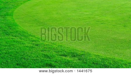 Campo de hierba ronda de golf